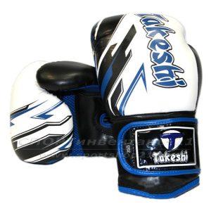 Перчатки боксерские Takeshi (10, 12 oz) TF-11-36