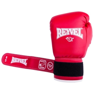 Перчатки боксерские RV-101